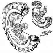 Колеса и ступицы ЮМЗ