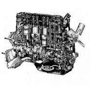 Запчастини двигунів Д-240, Д-242, Д-243, Д-245, Д-260 тракторів МТЗ